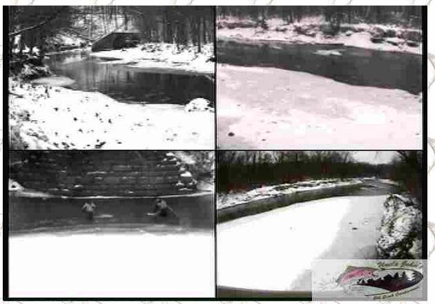 Uncle Johns Campground -live web cam on elk creek erie pa