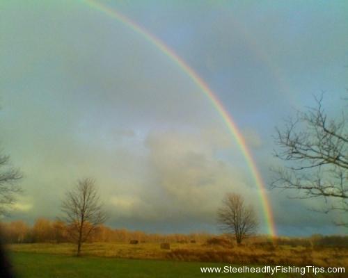 steelheadflyfishingtips.com_rainbow