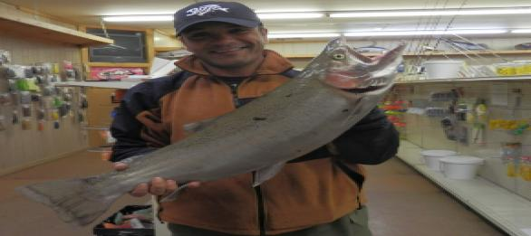trout-run-baittackle2012